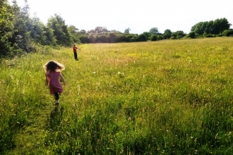 Taskers Meadow Credit Vicky Page / Offshoots Photography