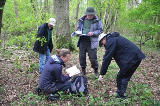 Woodland Condition Survey
