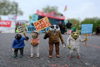 Ratty, Mole, Badger & Toad protest