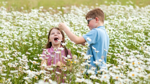 Children in meadow flowers Credit Vicky Page / Offshoots Photography
