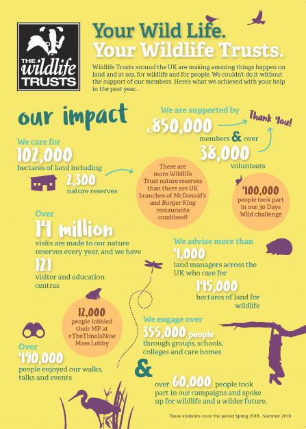 National Impact Statistics infographic
