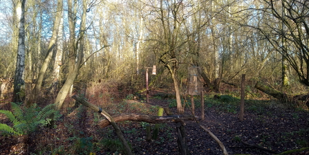 View from Woodland Hide WH Jo Hands