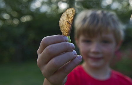 Boy holding up a sycamore seed, credit David Tipling/2020VISION