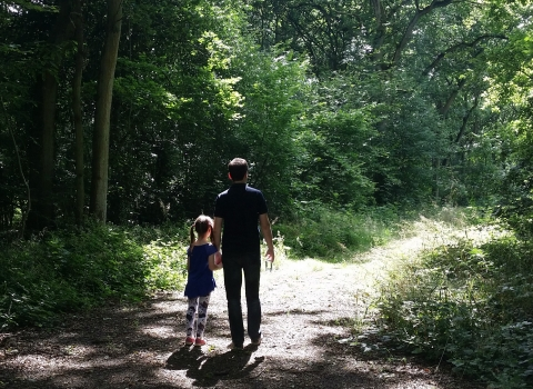 Bubbenhall Wood Family walk