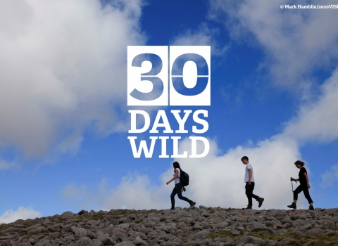 30 Days Wild Ridge Walk Mark Hamblin/2020Vision