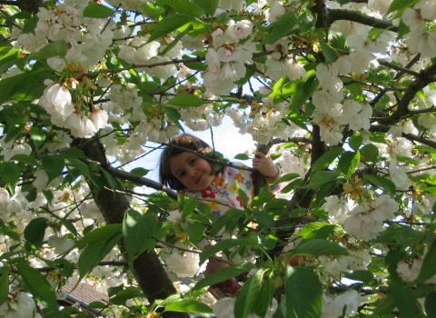 Girl in spring blossom My Wild Life campaign