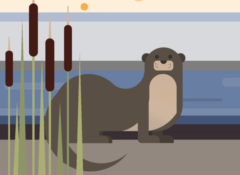 Appeal graphic 2021 Otter